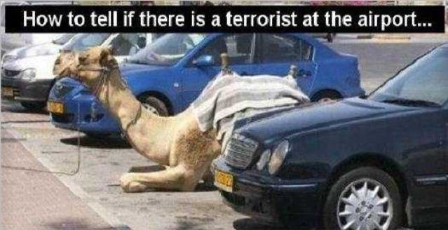 how to tell if there is a terrorist