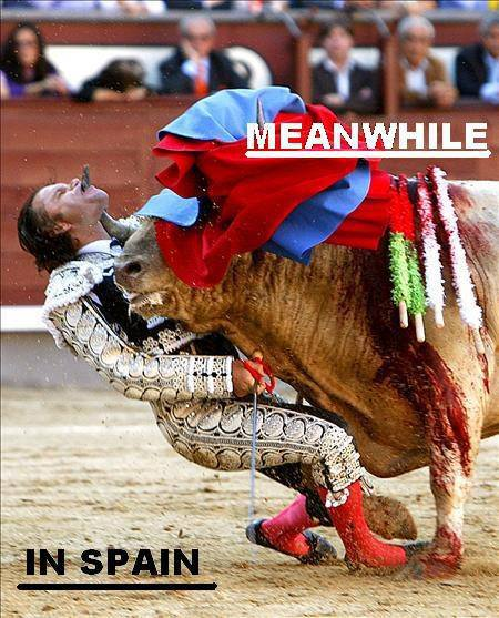 When the bull wins
