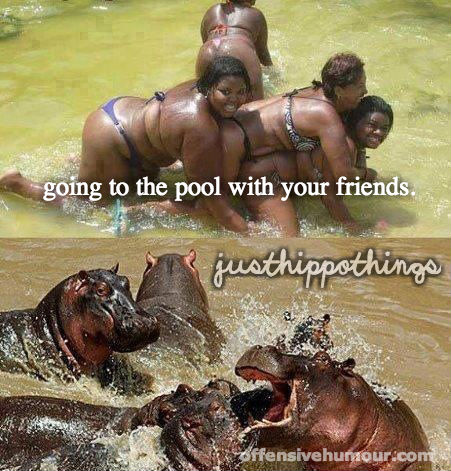Just hippo things