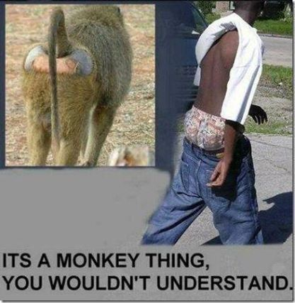 Only monkeys understand...
