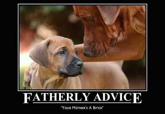 Some fatherly advice