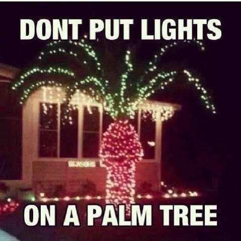 Why you don't put lights on a palm tree