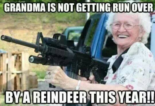 Not run over by a reindeer this year