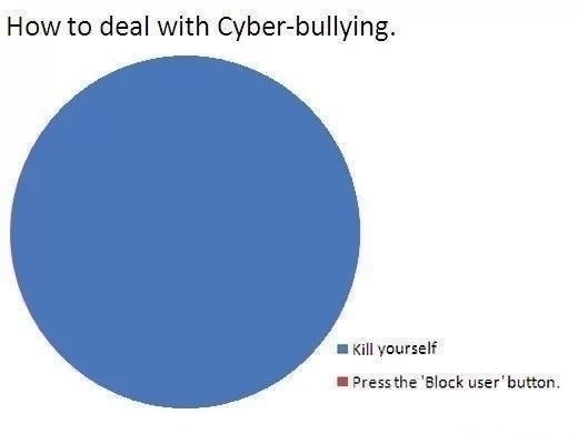 Dealing with cyberbullying pie chart